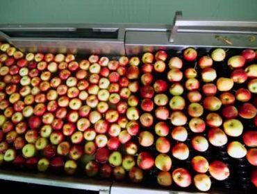 Beneficiação da ETARI da Frutissima